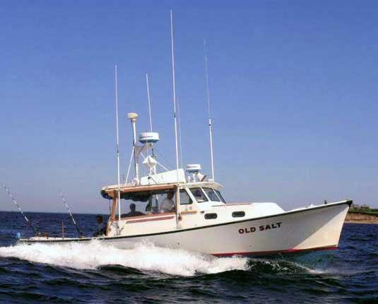 Ri Charter Fishing Boat Old Salt Rhode Island Sport Fishing Charters